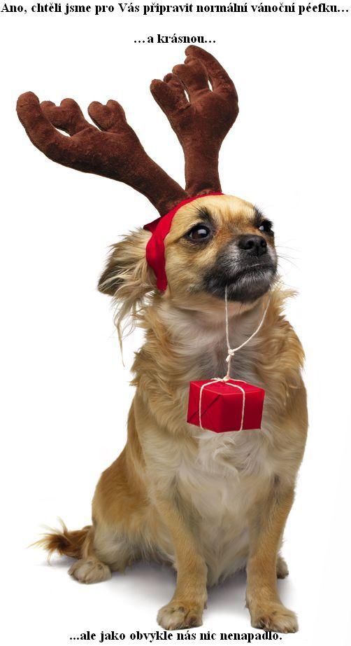 Ano, chtìli jsme pro Vás pøipravit normální vánoèní péefku… a krásnou. Ale jako obvykle nás nic nenapadlo.