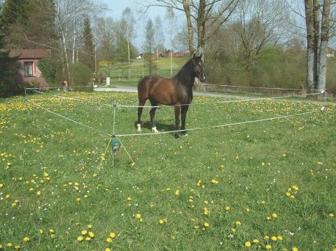 Turistická sada na mobilní elektrický ohradník pro koně