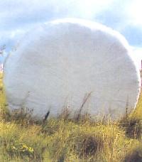 Balík senáže zabalený do bílé senážní fólie Triowrap